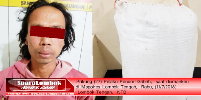 Beruntung, Nyawa Pencuri Gabah Selamat Ditangan Polisi