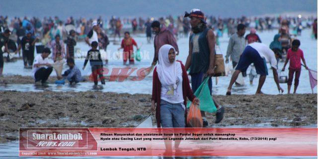 Festival Pesona Bau Nyale 2018 Sukses, Lautan Manusia Tumpah Ruah di Pantai Seger