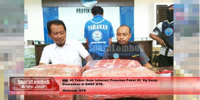 Terima Paket 20 Kg Ganja, Warga Perbawa Praya Ditangkap BNNP NTB