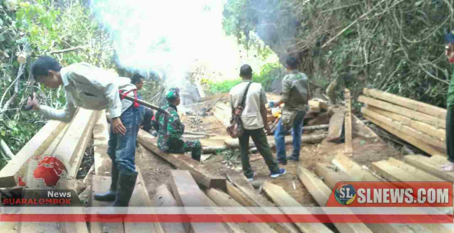 Opsgab Pengamanan Hutan di Ropang Amankan Ratusan Batang Kayu Ilegal