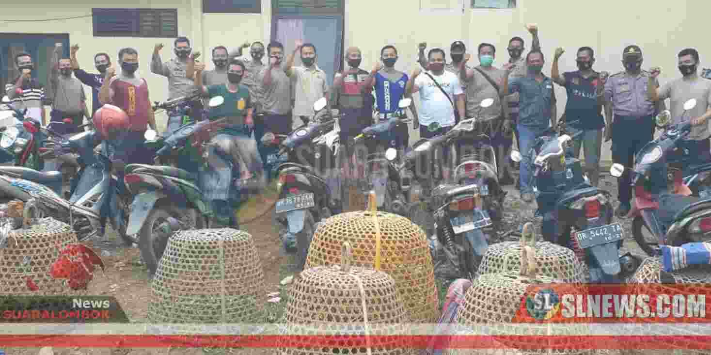 Polisi di Lombok Tengah Gerebek Arena Judi Sabung Ayam di Bile Lando