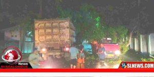 Pohon tumbang dijalan raya Biao Lombok Tengah