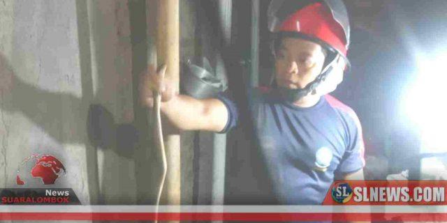 Bantu Warga, Tim Damkar BPBD Lombok Tengah Terkena Semburan Bisa Ular Kobra
