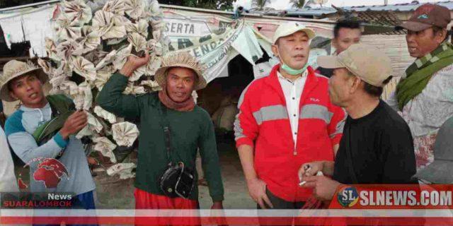 H Masrun : Lobster Bisa jadi Ikon Kuliner Lombok Tengah Mendunia