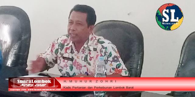 Pemkab. Lombok Barat Bagi – bagi Alat Pertanian Tembakau
