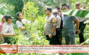 Polisi Temukan Ladang Ganja Seluas 5 Are di Tanjung Lombok Utara