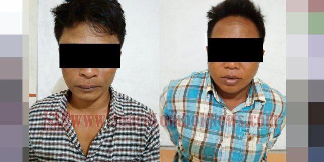 Ini Kronologis Penangkapan Dua Pelaku Pencuri Sapi Bersenpi