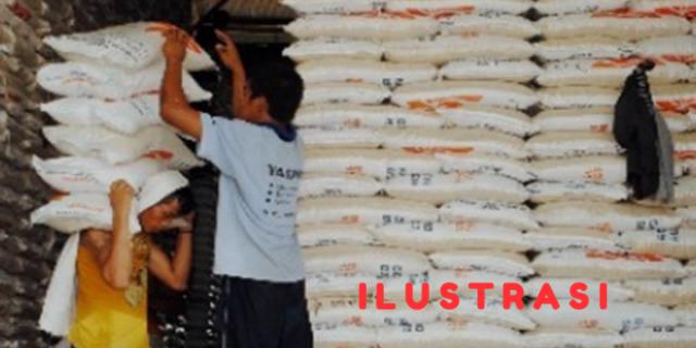 40 Ton Beras Yang Hilang Didalam Gudang Bulog Sengkol, Diduga Tidak Dicuri